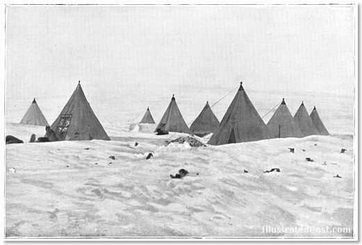 Antarctica: the tents for the dogs