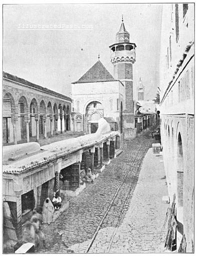 Becquia the mosque in Tunis.